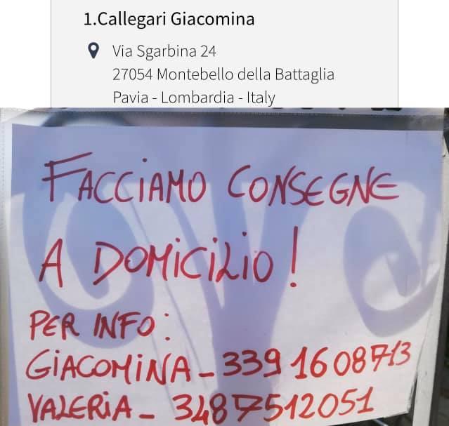 CALLEGARI GIACOMINA - MONTEBELLO DELLA BATTAGLIA - COLTIVAZIONI MISTE ORTAGGI, FIORI, AGRICOLTURA